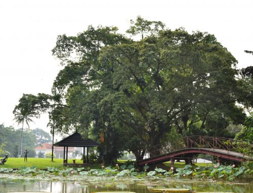 10 Tempat Wisata di Bogor yang Wajib Dikunjungi
